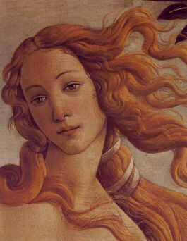 <i>Birth of Venus</i> <BR>(detail of Venus), Sandro Botticelli